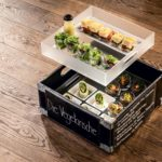 """Die Vegetarische"" APERO Box by Mangosteen Catering"