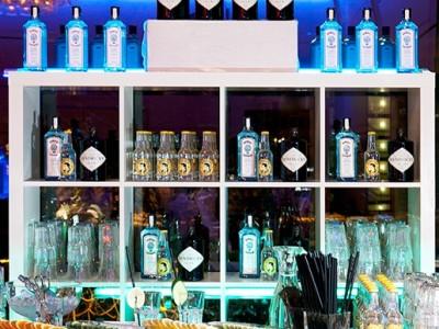 Zürich Marriott Hotel: Gin Bar
